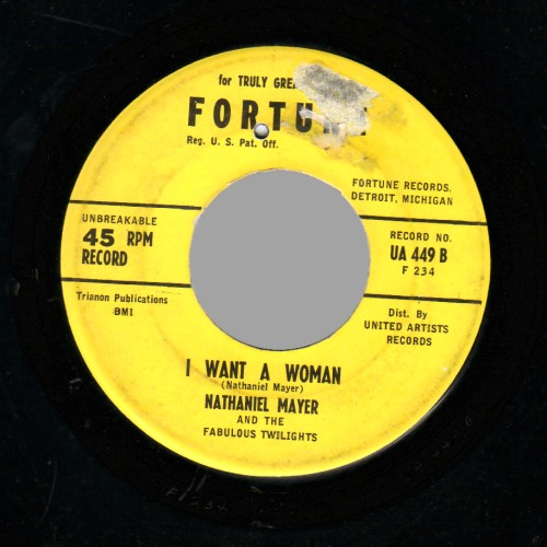 NATHANIEL MAYER & THE FABULOUS TWILIGHTS - Village of Love / I Want A Woman - 45T (SP 2 titres)